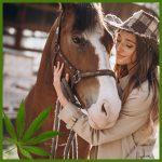 CBD & Canna for Horses
