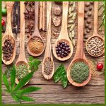 CBD & Canna Herbs & Spices