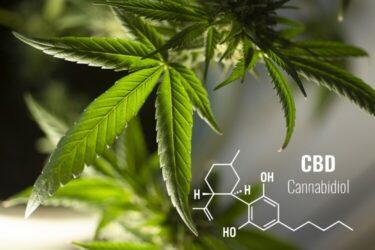 Cannabidoil CBD